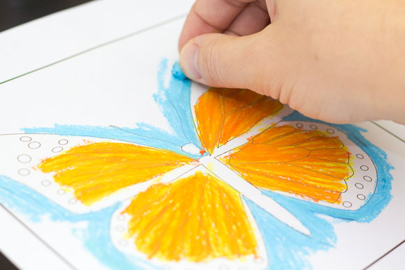 Oil Pastel Art Project - Monarch Butterfly - Art For Kids ...