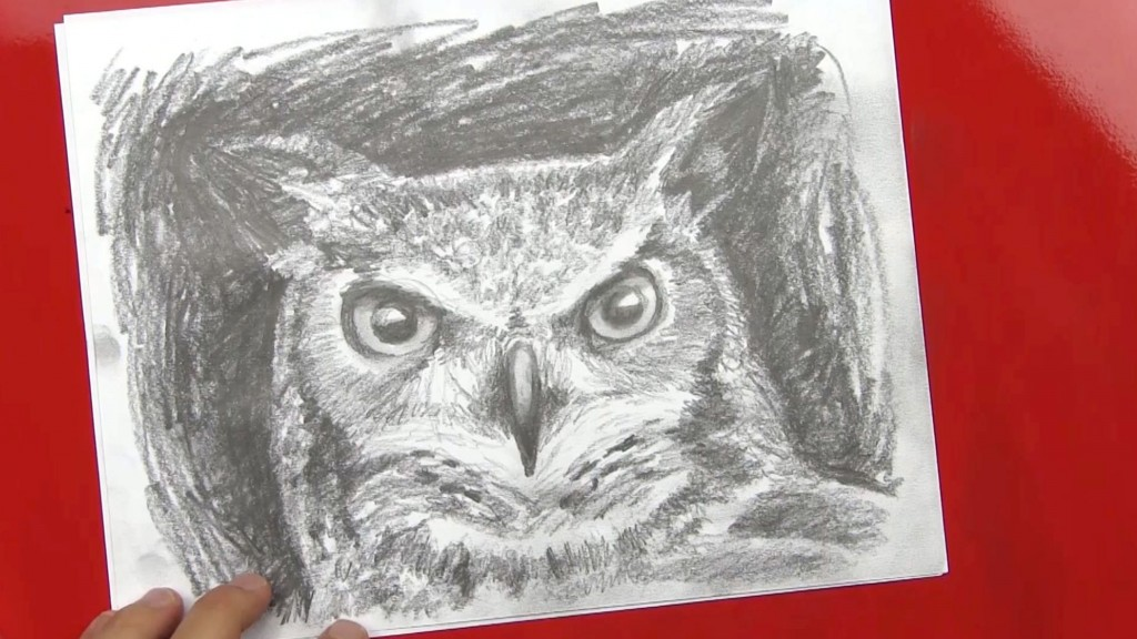 Speed Drawing Of An Owl