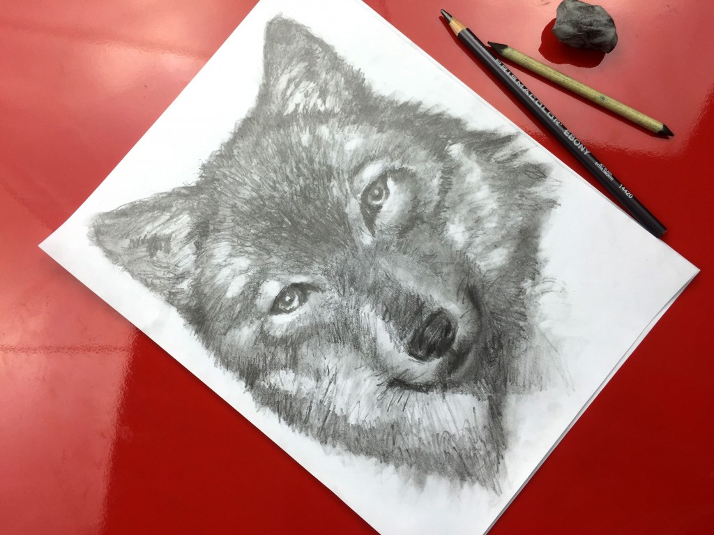 Wolf Speed Drawing