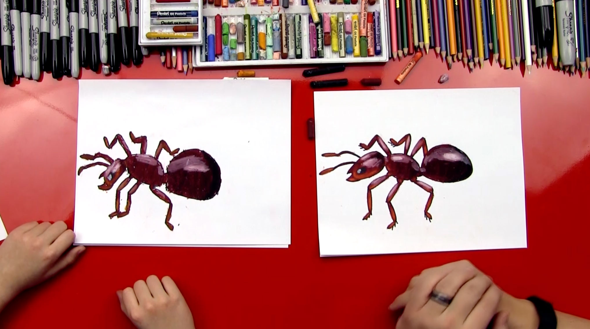 How To Draw An Ant Art For Kids Hub