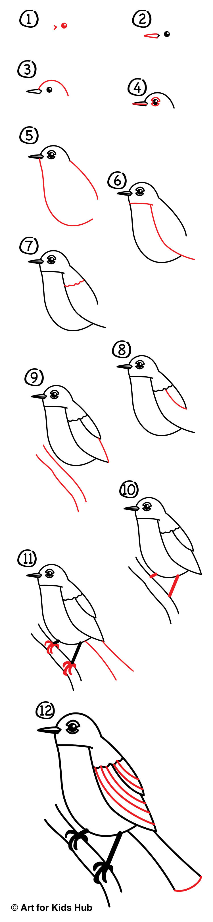 How To Draw A Robin Bird (Realistic) - Art For Kids Hub