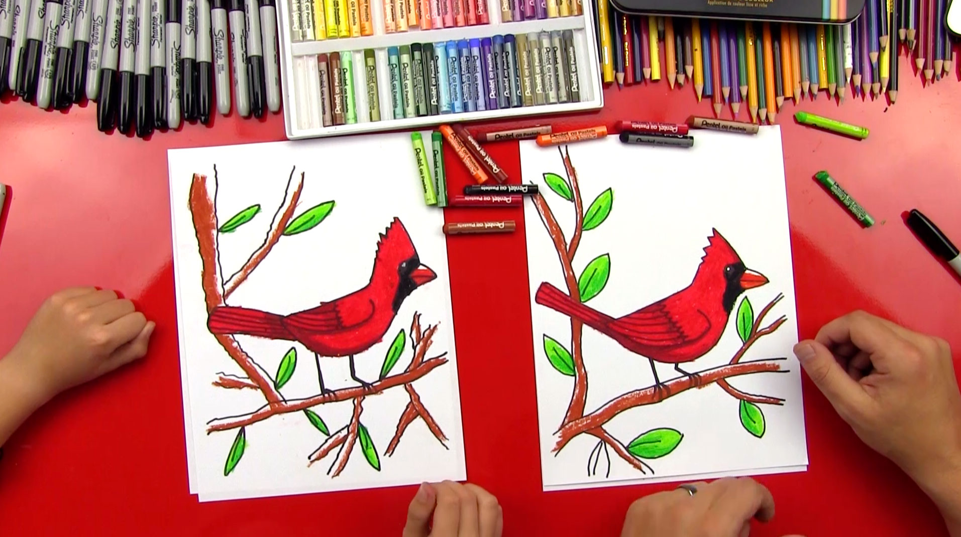 how to draw a cardinal art for kids hub