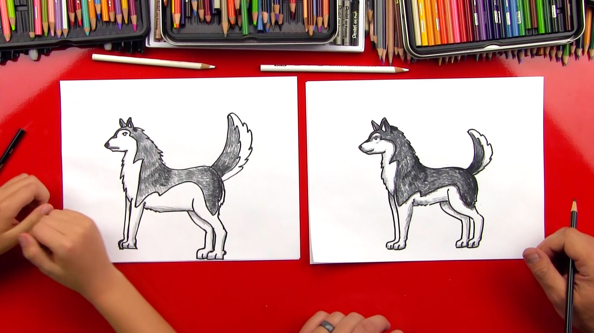 Epic Angry Birds Timelapse Drawings Cool Music: How To Draw A Realistic Husky