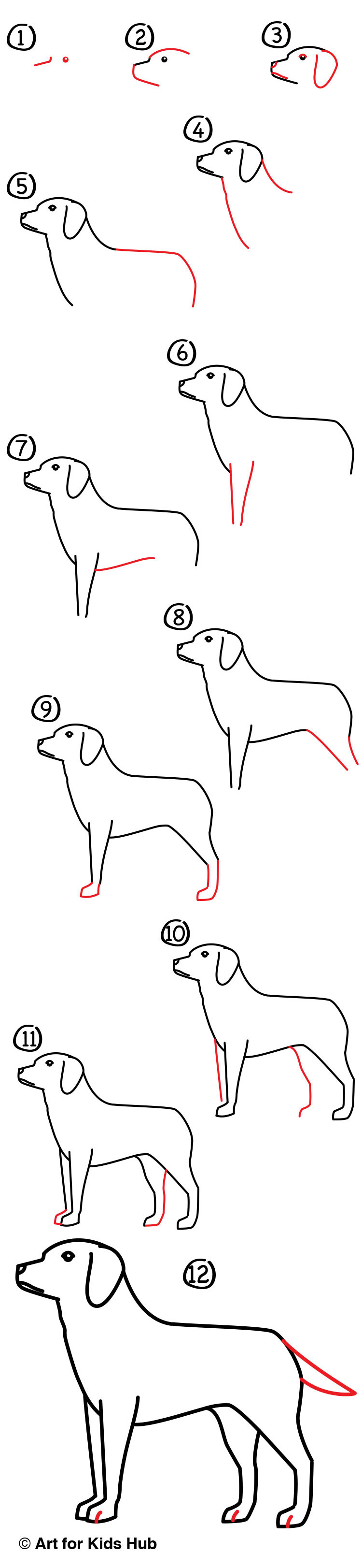 How To Draw A Yellow Labrador Art For Kids Hub