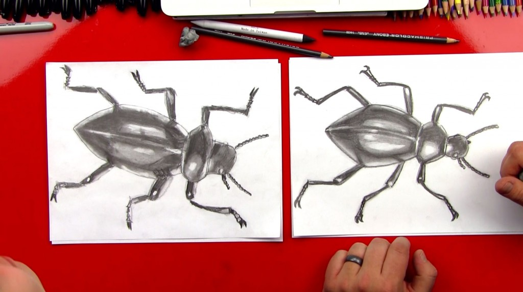 How To Sketch A Beetle – ADVANCED