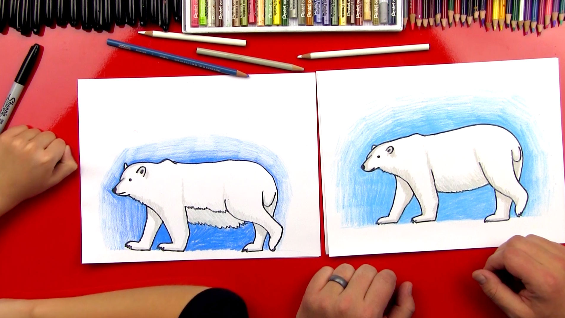how to draw a polar bear realistic art for kids hub
