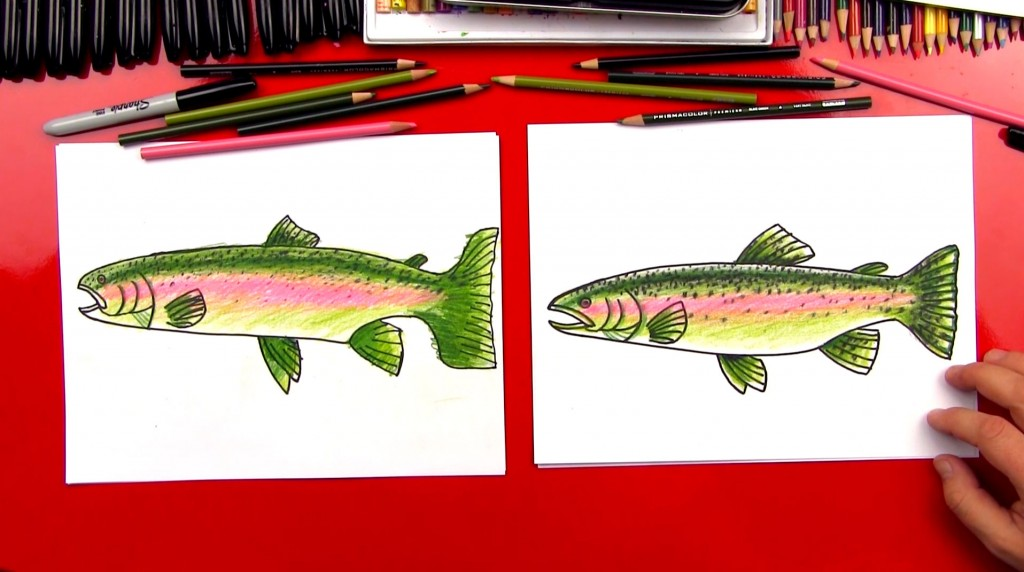 How To Draw A Rainbow Trout (realistic)