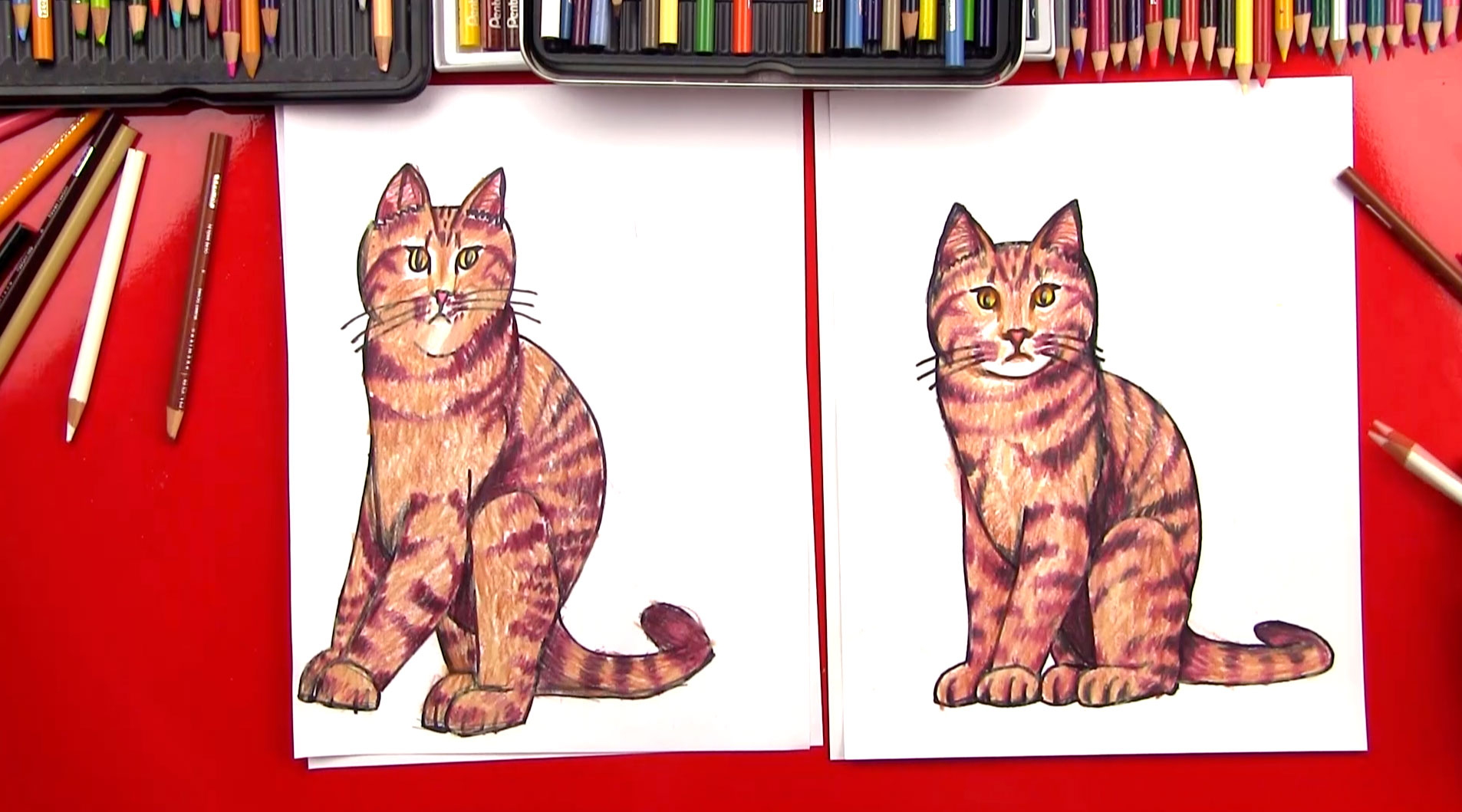 how to draw a realistic cat art for kids hub