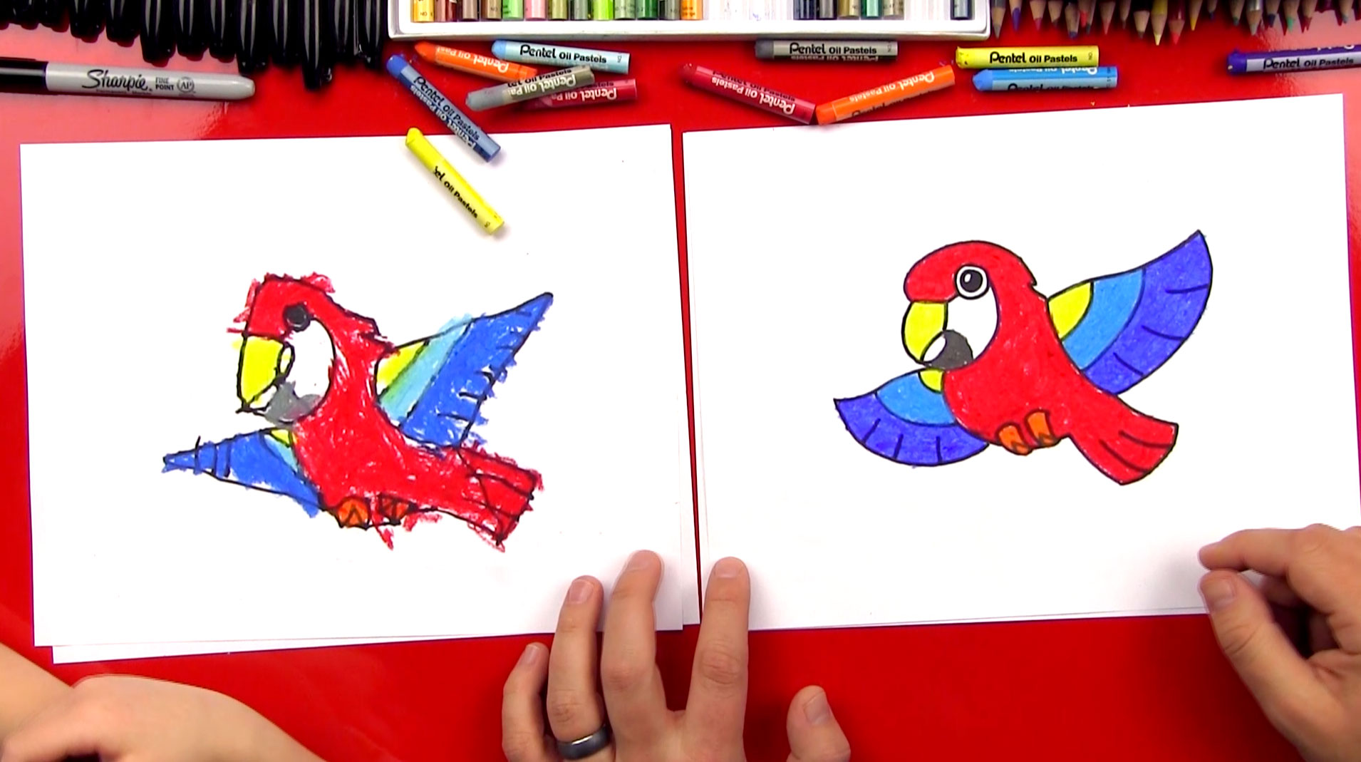 How To Draw A Cartoon Parrot - Art For Kids Hub -
