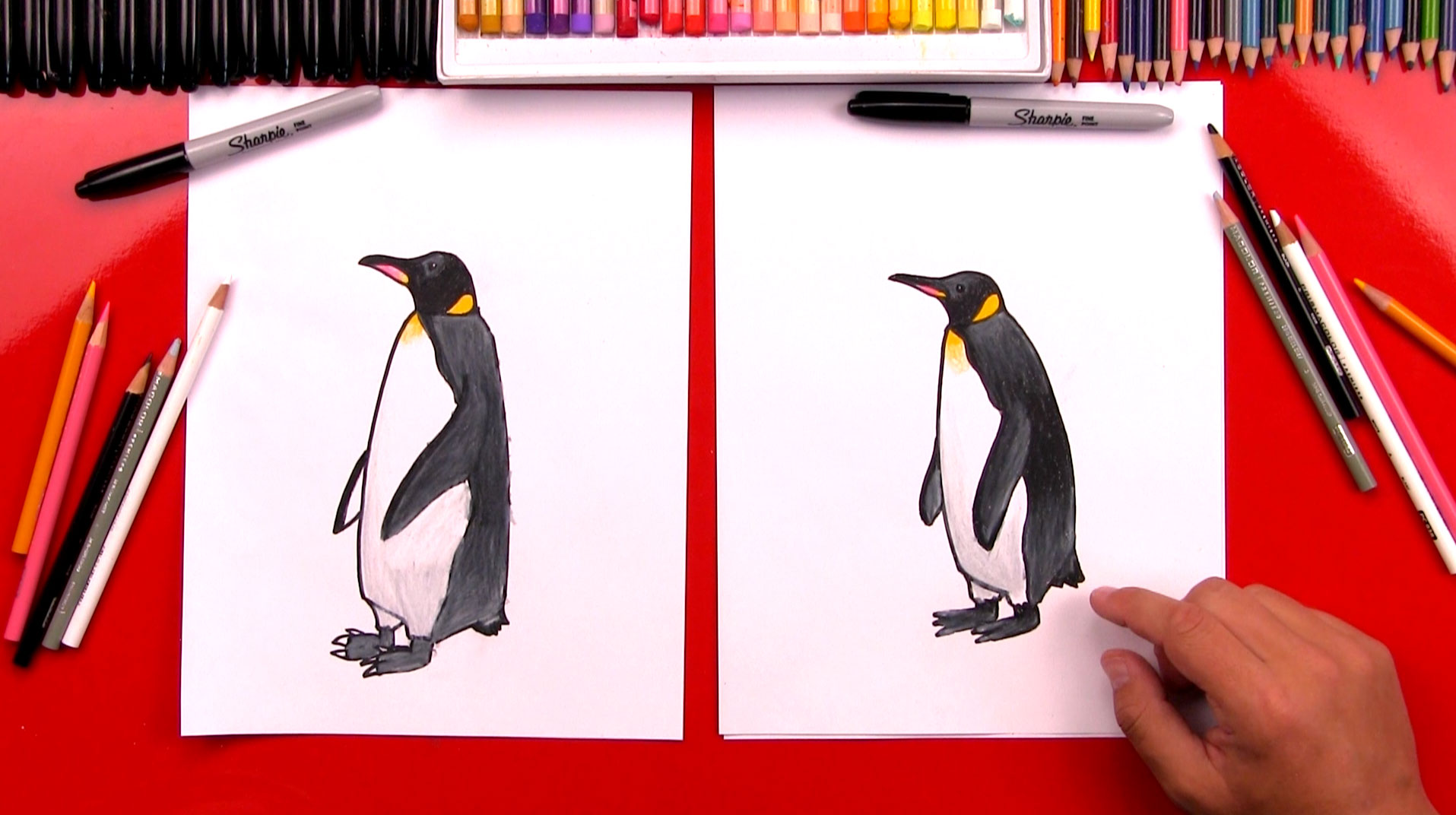 how to draw a realistic emperor penguin art for kids hub