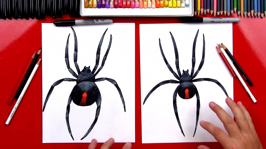 How To Draw An Australian Redback Spider (Art Club Members)