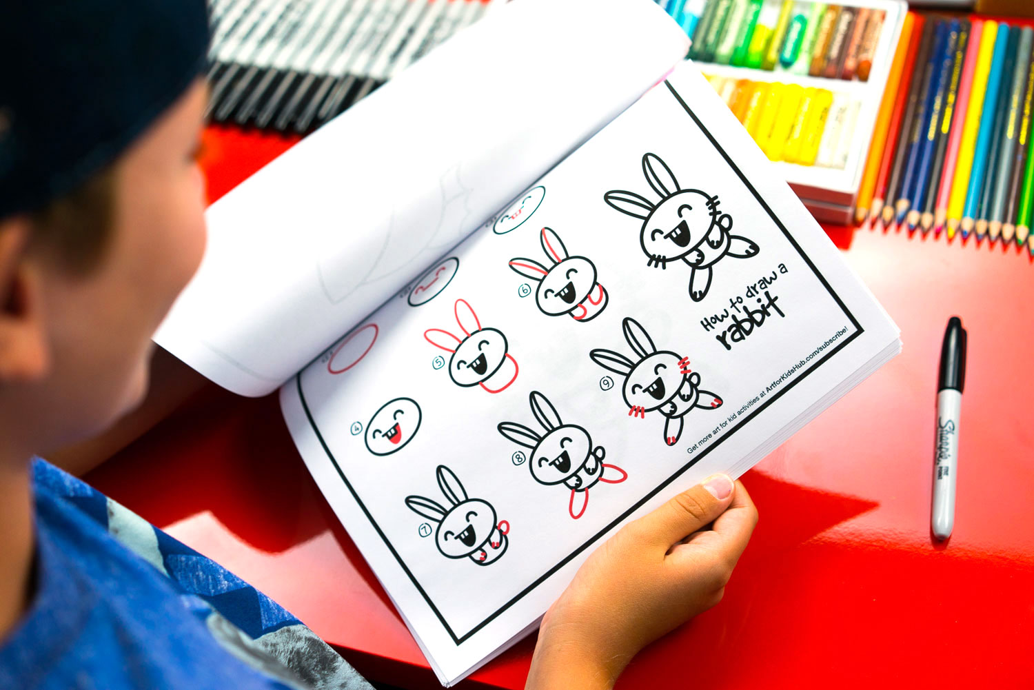 How To Draw Cartoon Animals Art For Kids Hub