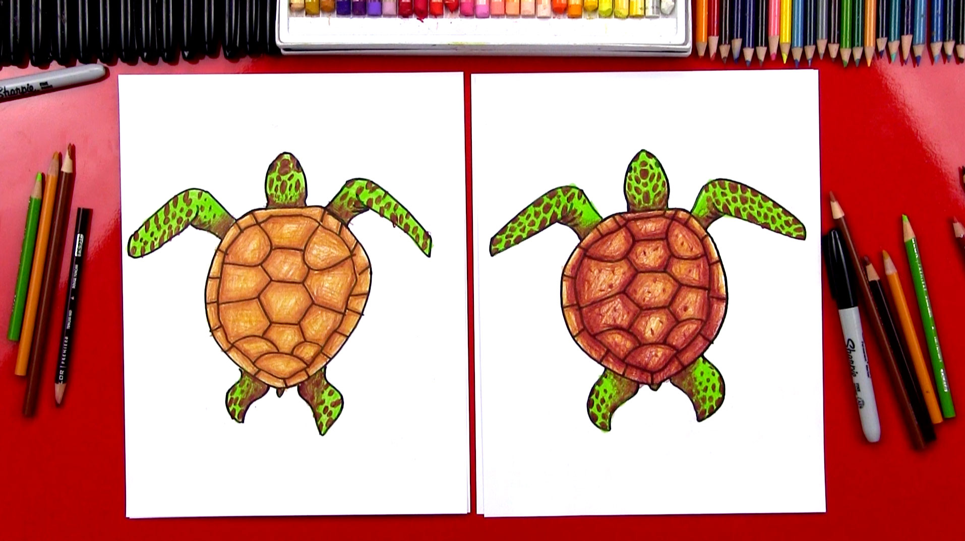 How To Draw A Realistic Sea Turtle - Art For Kids Hub