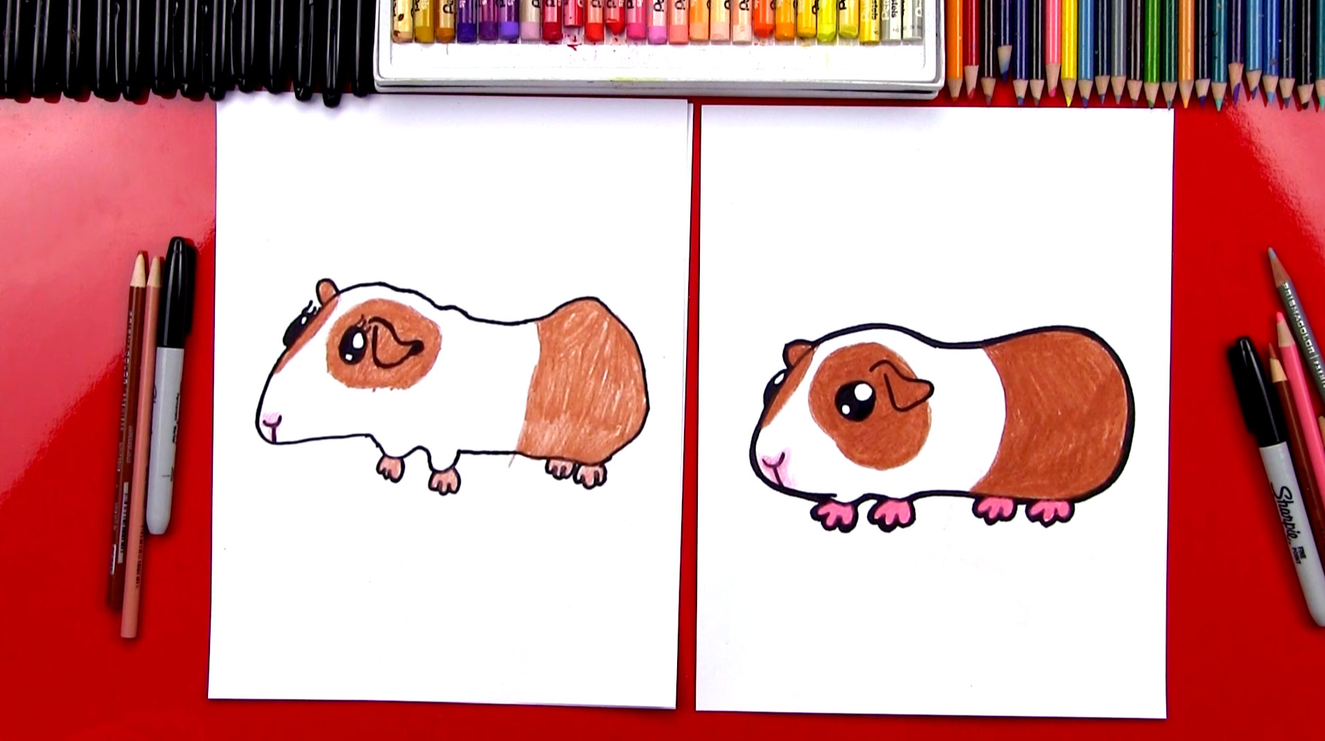 Uncategorized How To Draw A Guinea Pig Step By Step how to draw a guinea pig art for kids hub