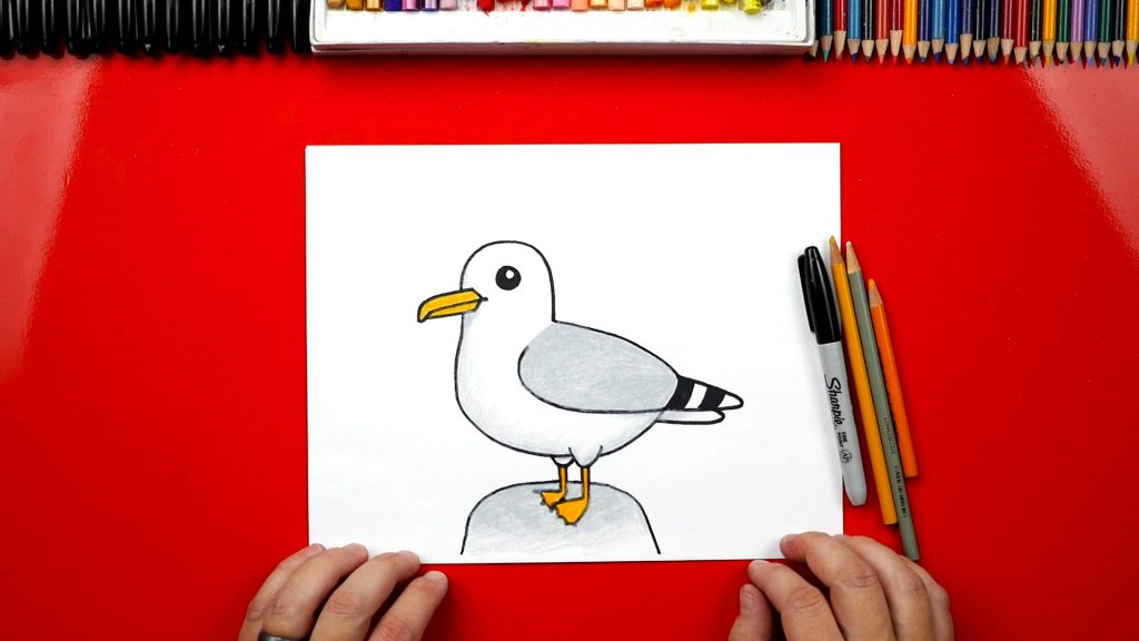 how to draw a cartoon seagull