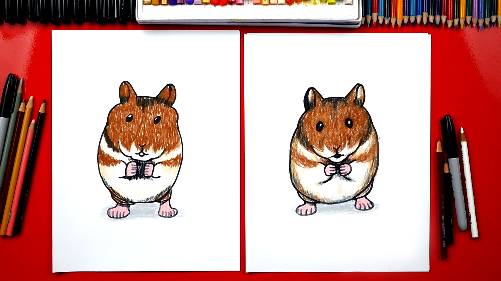 how to draw a realistic hamster art for kids hub