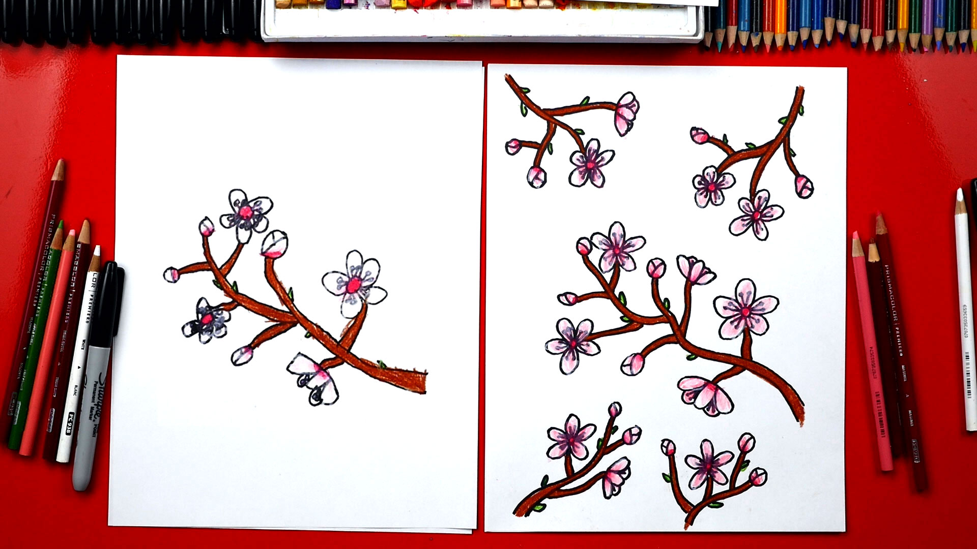 How To Draw Cherry Blossoms New Spring Ebook Art For Kids Hub