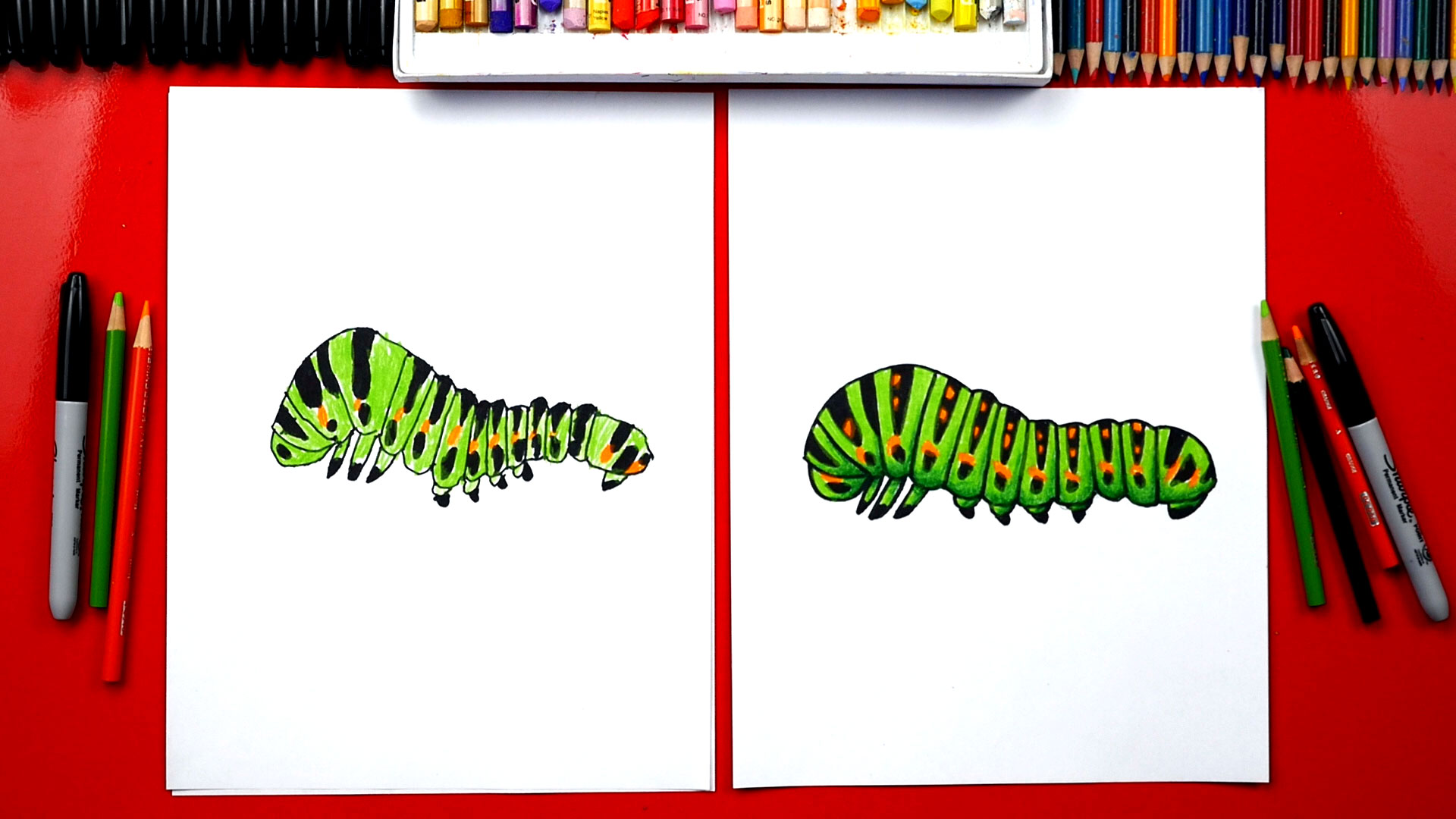 How To Draw A Caterpillar - Art For Kids Hub