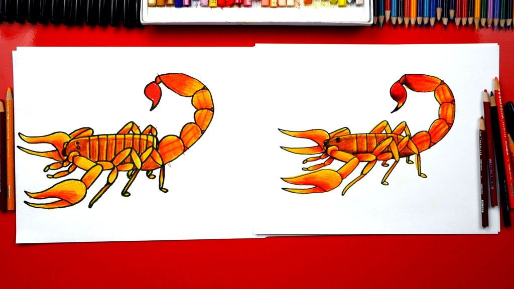 How To Draw A Realistic Scorpion