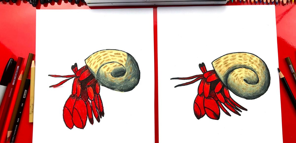 How To Draw A Hermit Crab