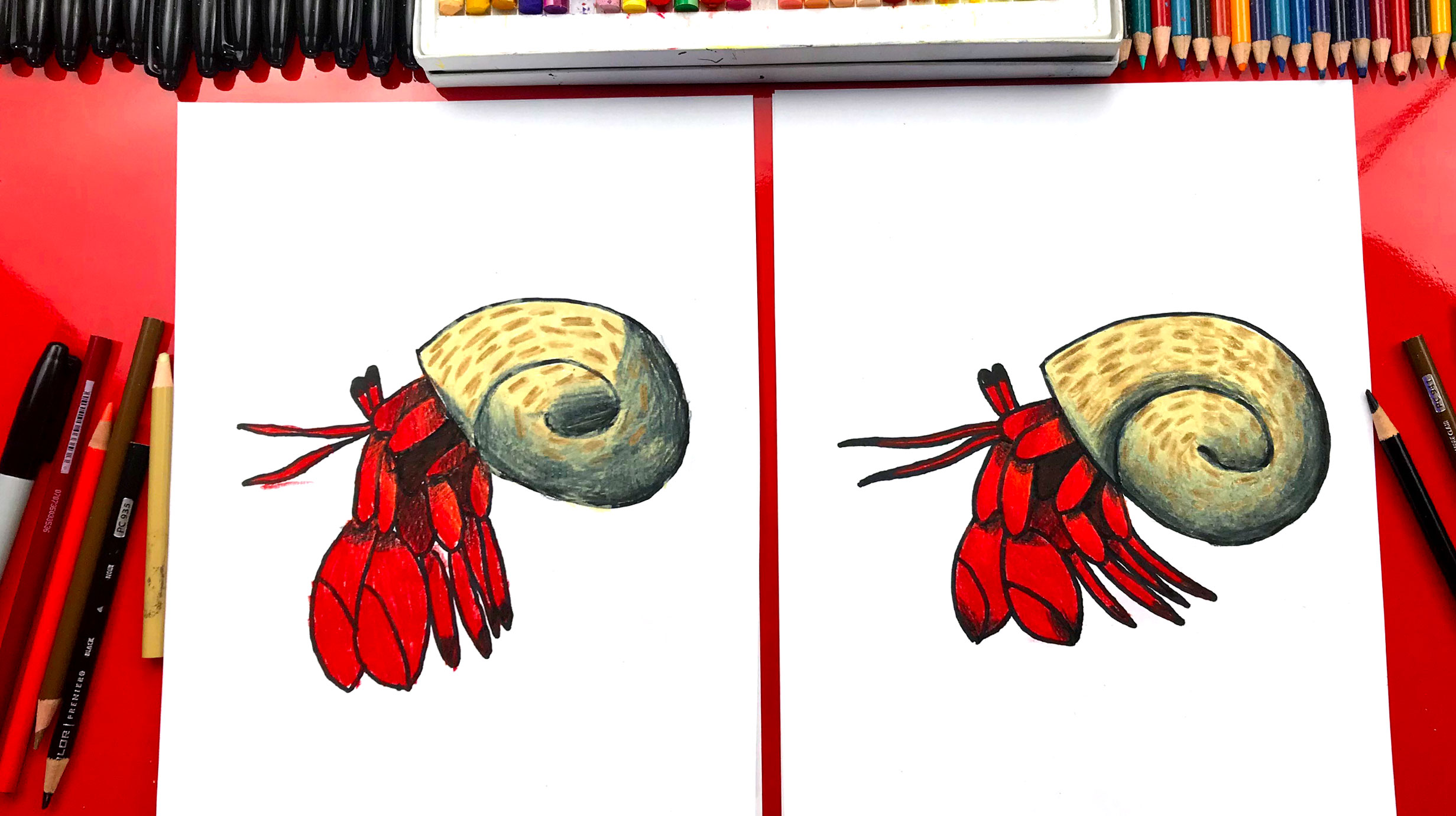 How To Draw A Hermit Crab Art For Kids Hub