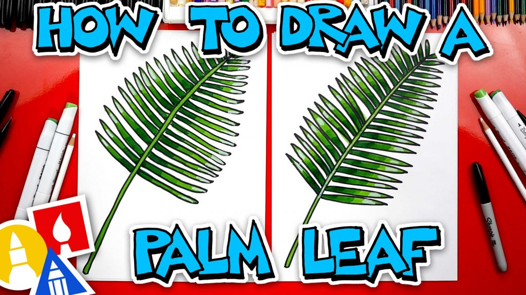 How To Draw A Palm Leaf