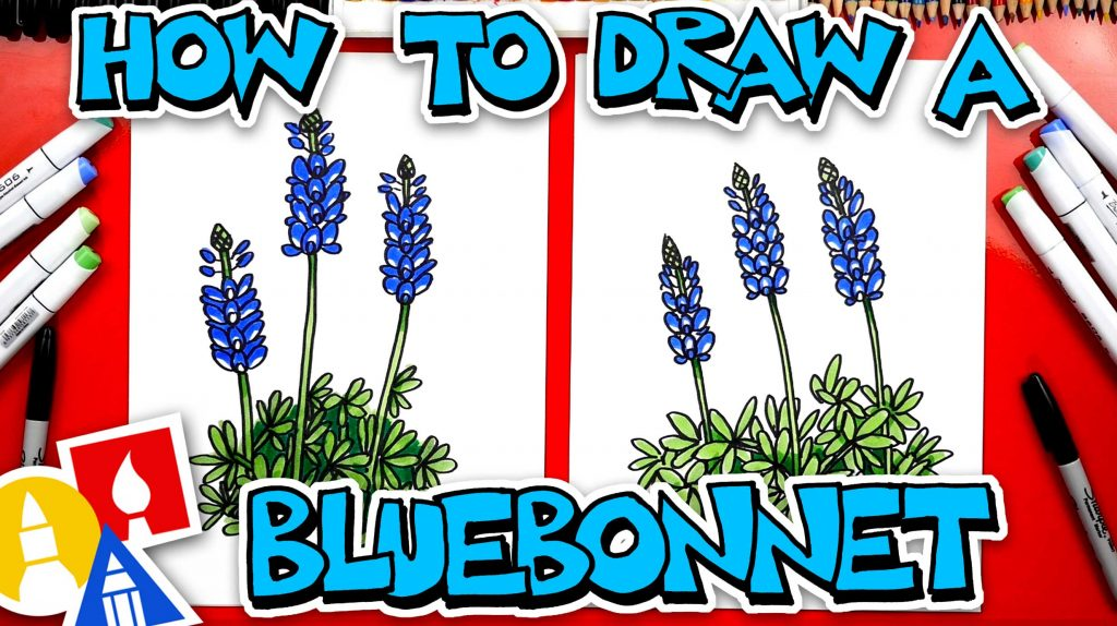 How To Draw A Bluebonnet Flower – Texas State Flower