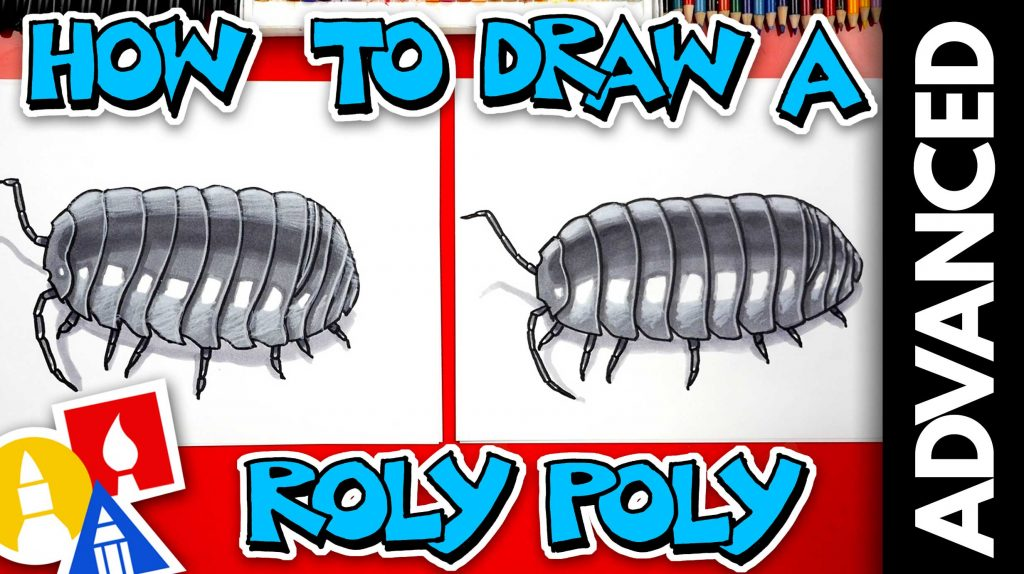 How To Draw A Realistic Roly-Poly Pill Bug – Advanced