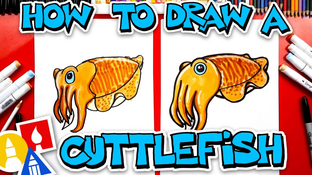 How To Draw A Cuttlefish