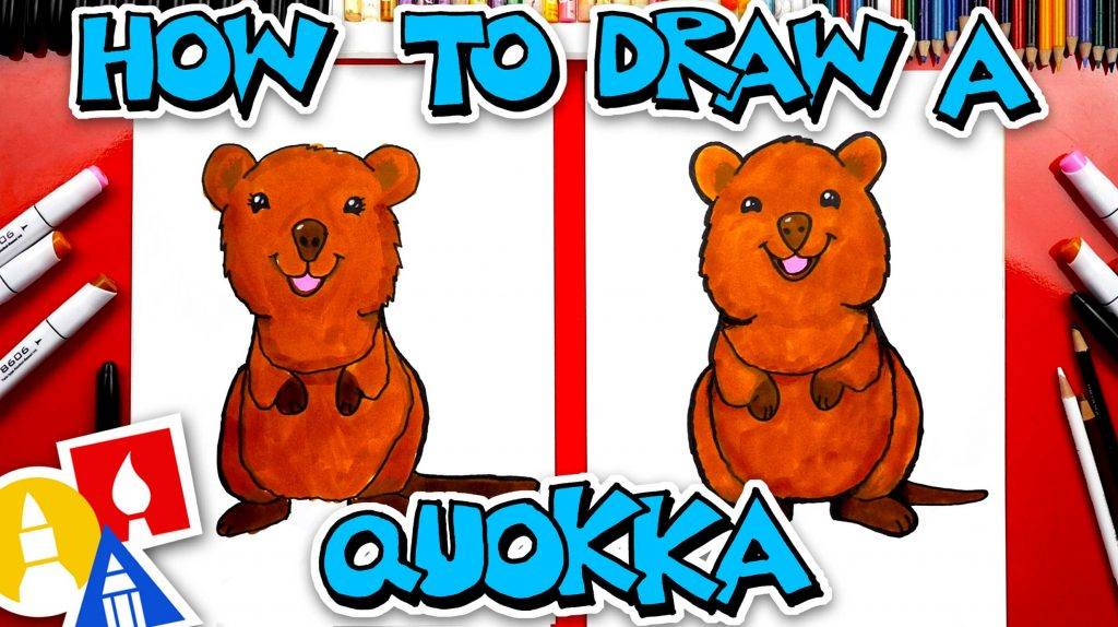 How To Draw A Quokka Wallaby