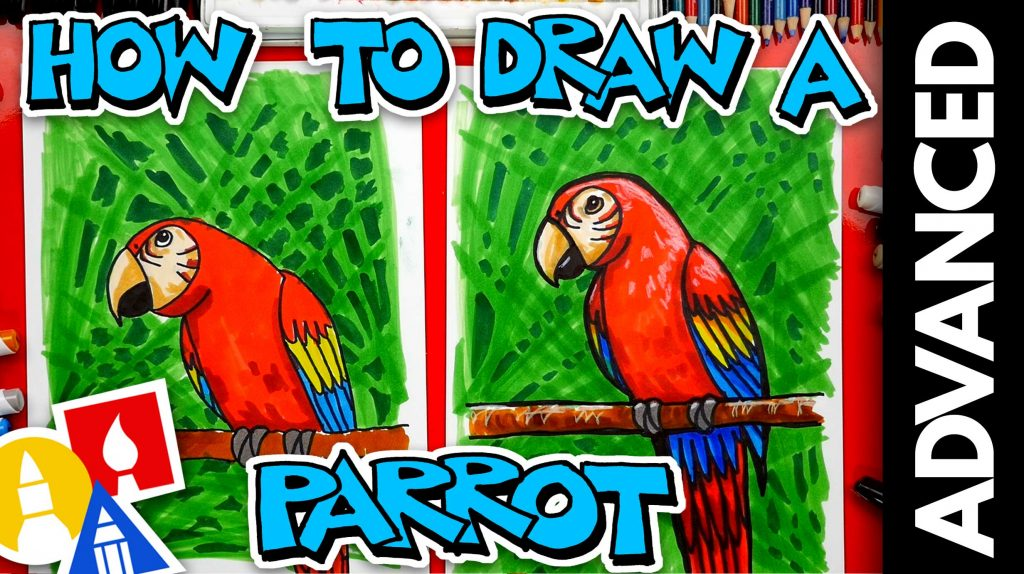 How To Draw A Bird (Parrot) – Advanced