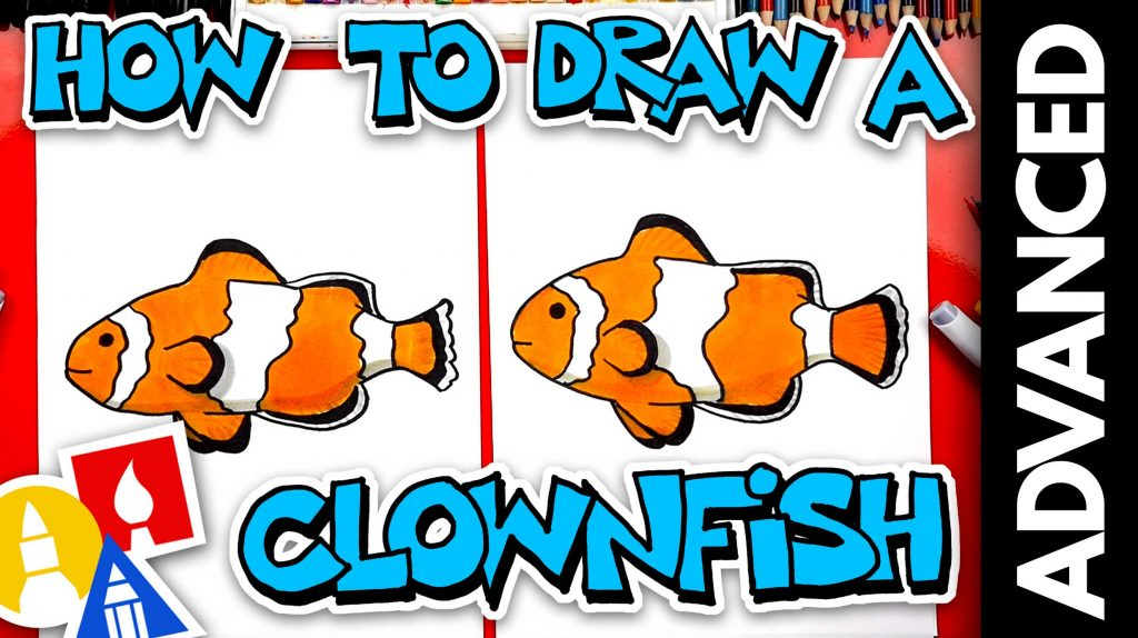 How To Draw A Realistic Clownfish