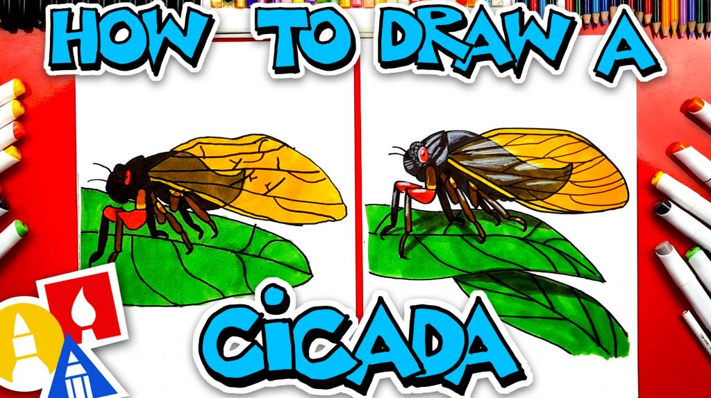 How To Draw A Cicada Insect